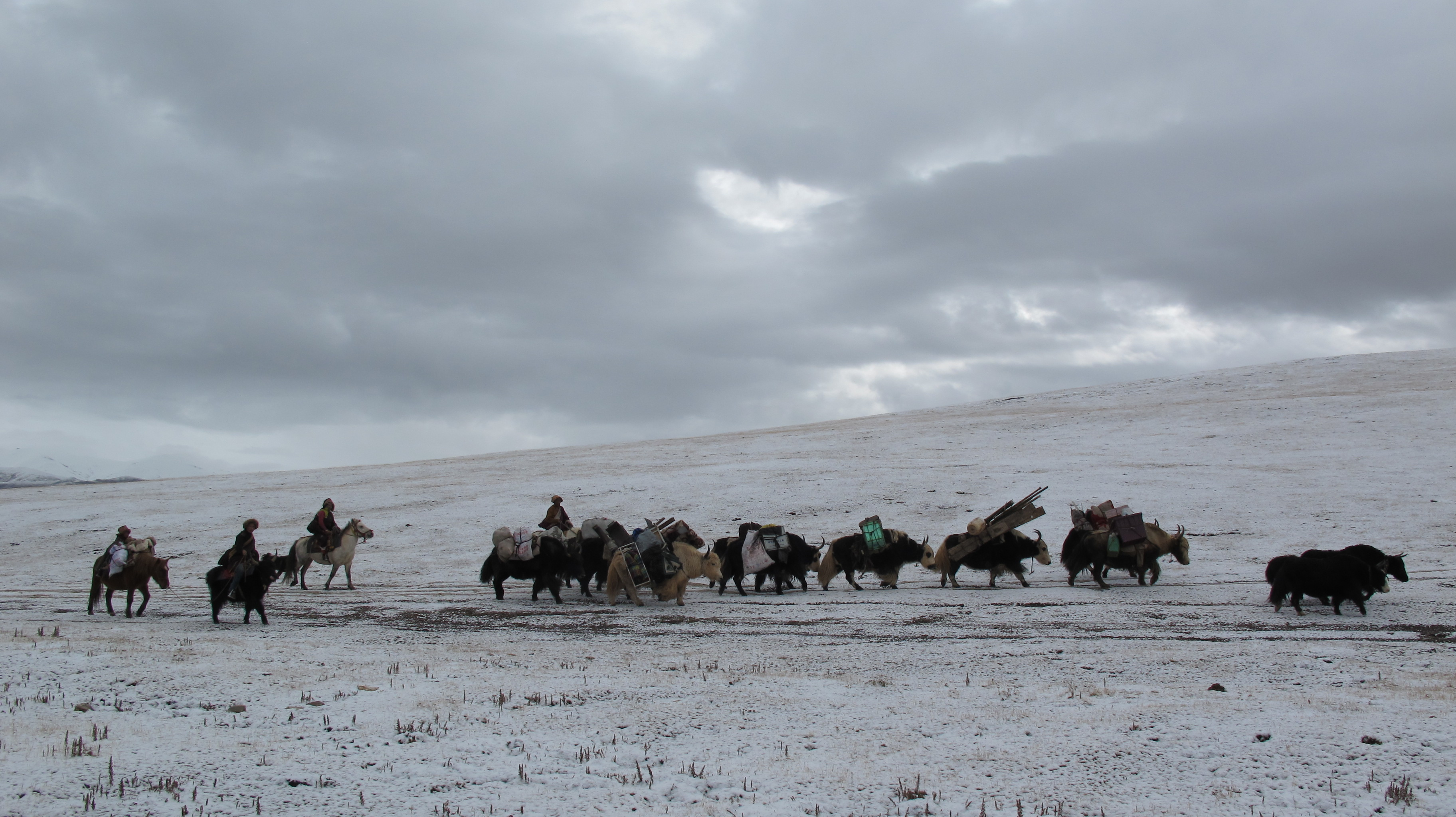 Nomads moving their home