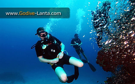 Drift Diver Adventure Dive