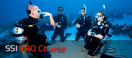 list-ssi-pro-course-s.jpg