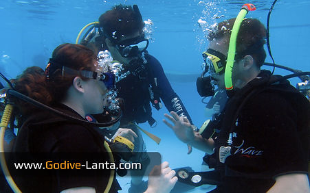course-discover-scuba-diving-pool1.jpg