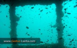 trip-dive-king-cruiser-ship-wreck1