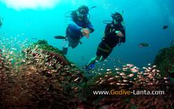 trip-diving-koh-bida04.jpg