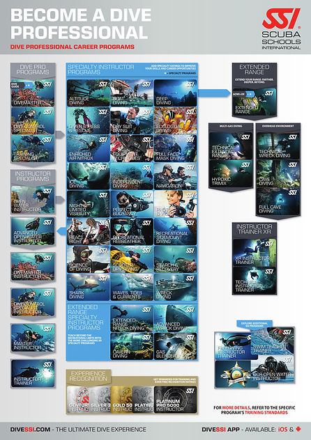 Dive Professional Pathway