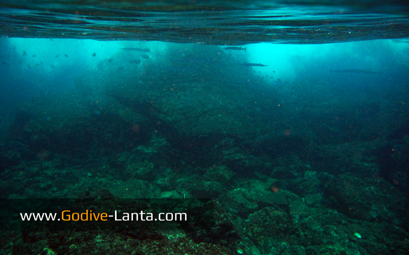 trip-diving-hin-bida2.jpg