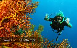 trip-diving-koh-bida11.jpg