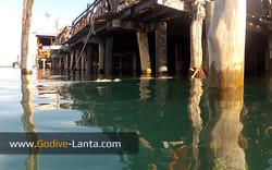 trip-diving-jetty03.jpg