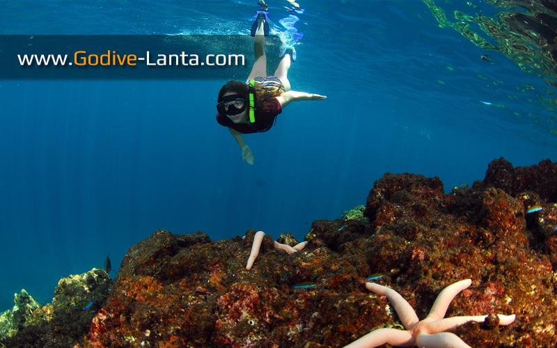 trip-snorkeling-koh-ha-yai