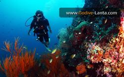 trip-diving-koh-bida19.jpg