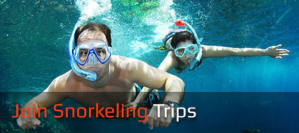 Trips Snorkeling Rates
