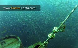 trip-diving-klet-kaew-ship-wreck7.jpg