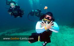 trip-diving-koh-pp20.jpg