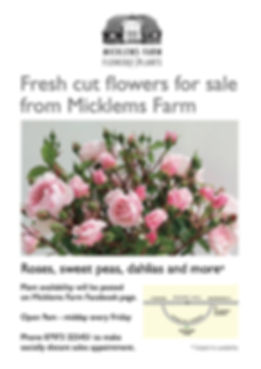 Micklems Farm Flowers.jpg