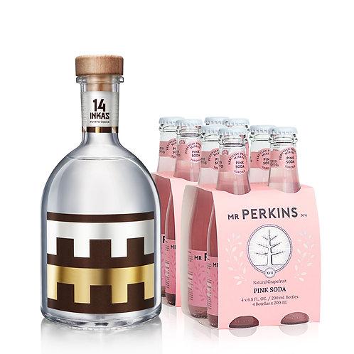 Botella 14 Inkas 750ml + 2 Four Pack Pink Soda