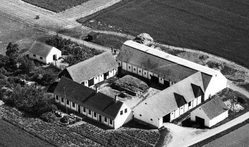 Ibsker-14-slg-1949.jpg