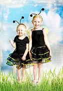 Baby Bees - Big Buggy World