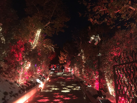 Christmas party and holiday event lighting