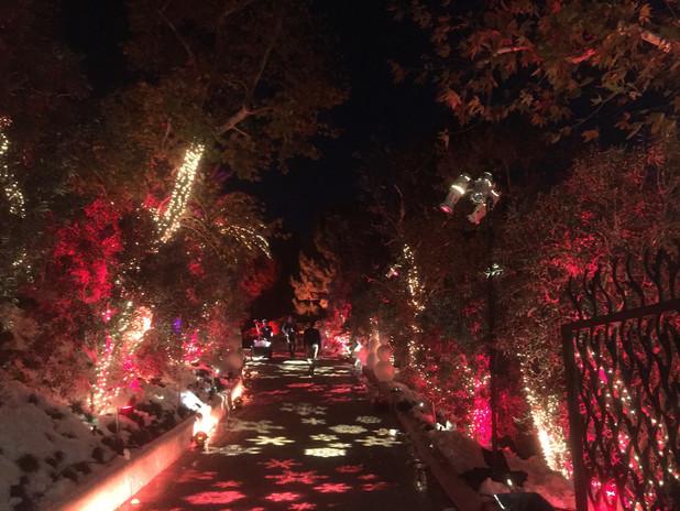 Decorative Outdoor Pathway Lighting