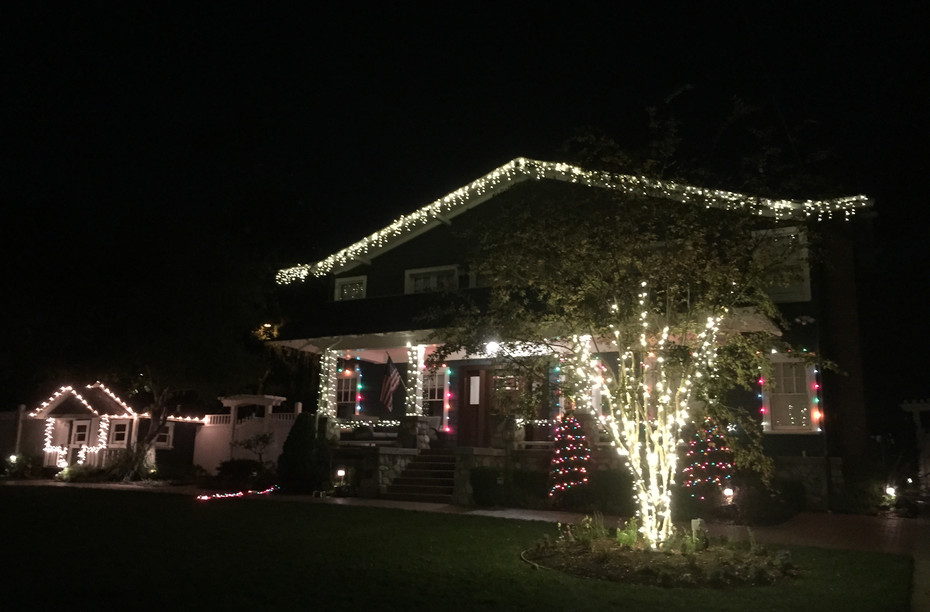 We decorate roof lines, outdoor trees, bushes, and more!