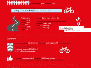 Biking the Streets of Copenhagen