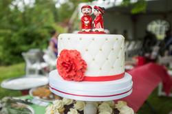 Custom Cake and Mini Cupcakes