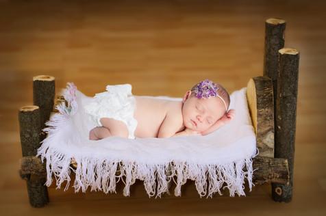 newbornlogbed701.jpg