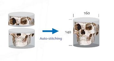 3D CT 2.jpg