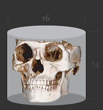 3D CT 7.jpg