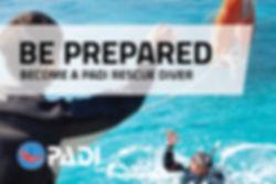 Rescue-OnlineBanners_EN_2.jpg