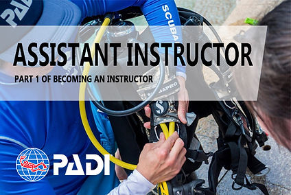 assistinstruct.jpg
