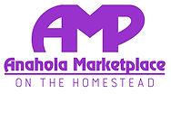 AMP%252520Logo_edited_edited_edited.jpg