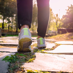 Getting Started With Exercise