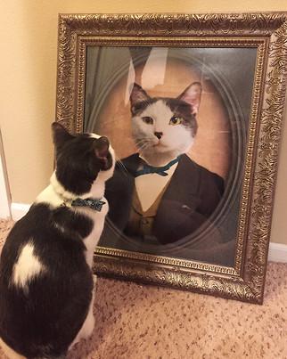 Oscar_Pet.jpg