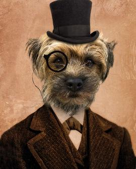 Sir-Watson_16x20.jpg