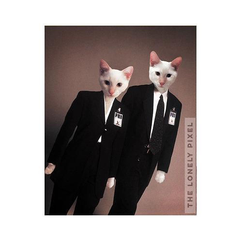 Cat-Files
