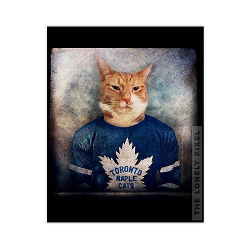 Toronto Maple Cats