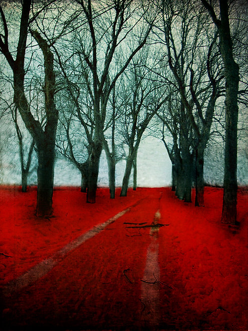 The Crimson Forest