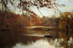 Autumn's Wonder
