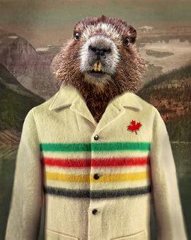 Hudson-Beaver.jpg