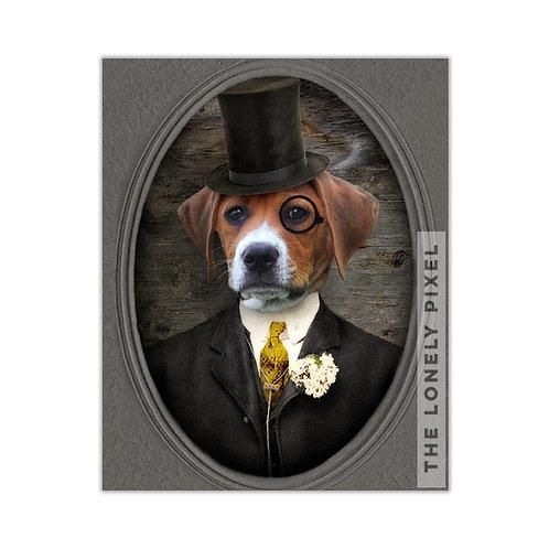 Beagle - Dr. Buckley