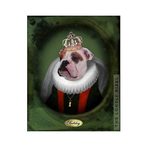 Lucy Bulldog
