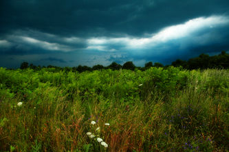 A Storm of Grandeur