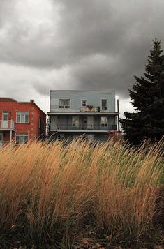 Lachine-Grass.jpg