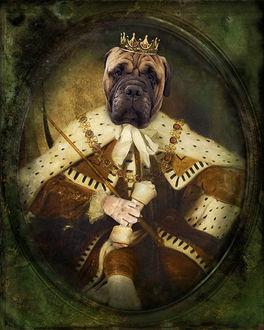 King-George.jpg
