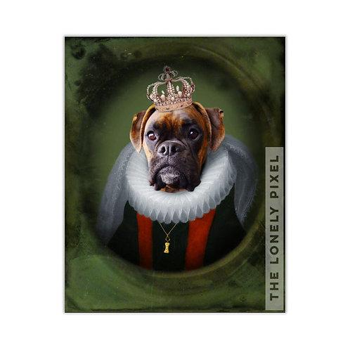 Boxer - Queen Charlie