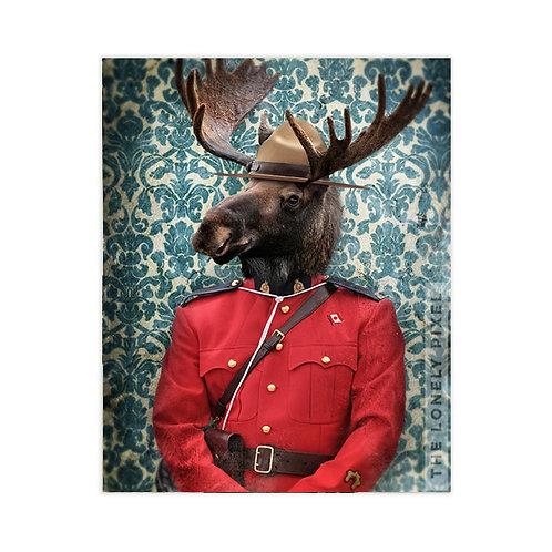 Morris B. Moose