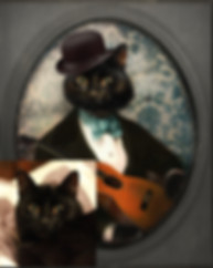 Custom_Cat.jpg