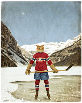 "Montreal ""Cat""adiens"