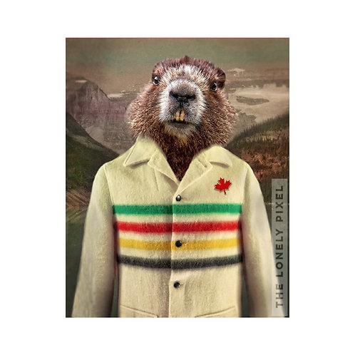 Hudson Beaver