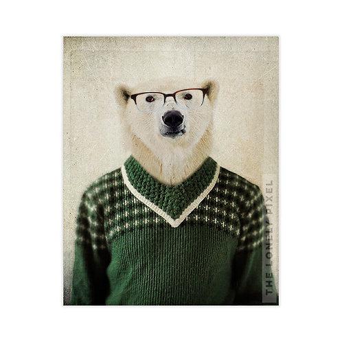 Spencer Bear