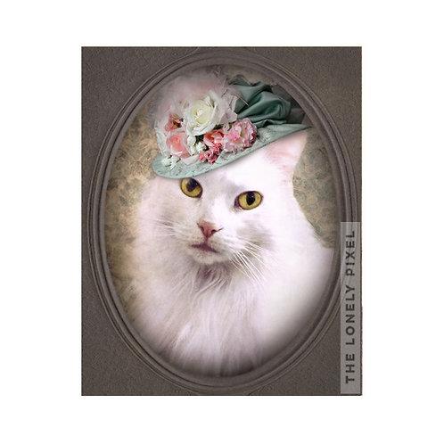 Lady Winkle